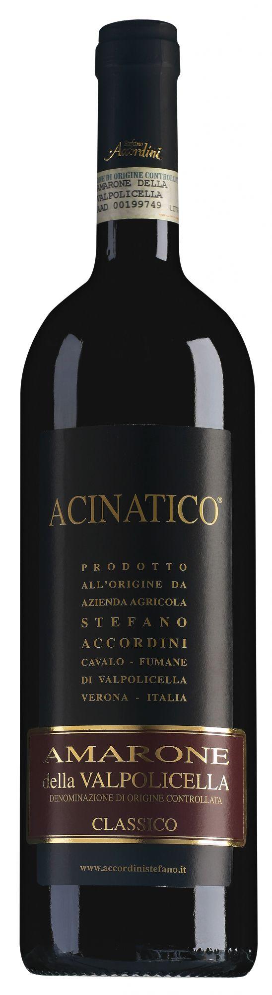 Stefano Accordini Amarone della Valpolicella Classico halve fles